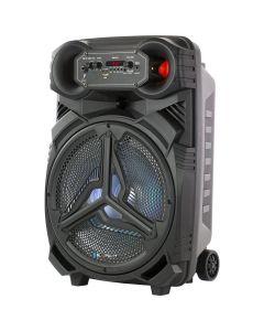 "Blaupunkt 12"" Portable Party Speaker"