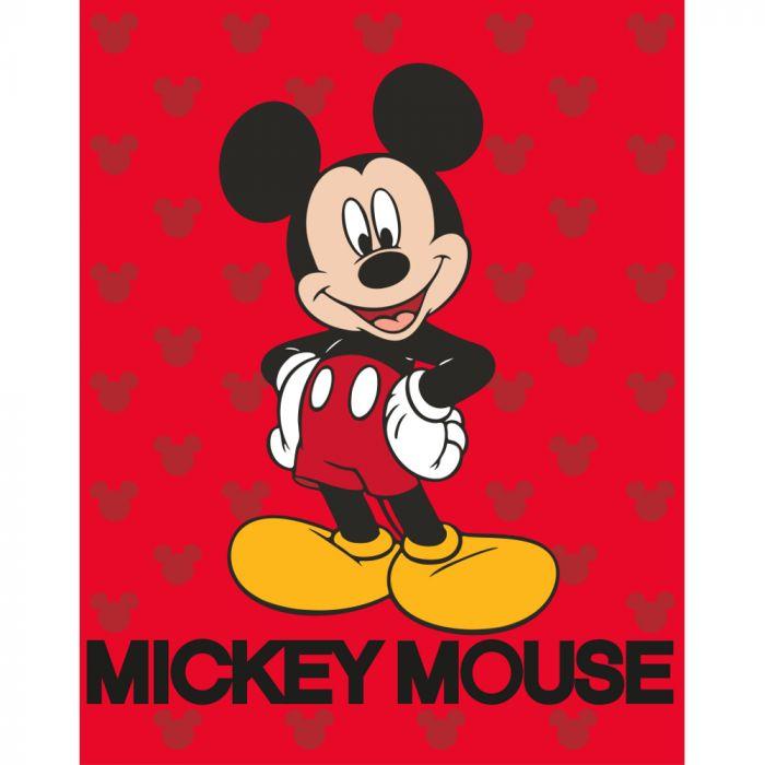 Disney Baby Blanket Mickey