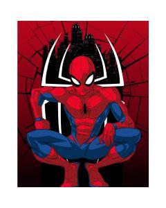 Disney Baby Blanket Spiderman