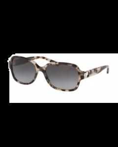 Coach Women's Sunglasses Square - Grey Tortoise Havana