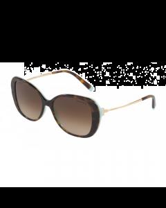 Tiffany Women's Sunglasses Butterfly - Havana/Blue