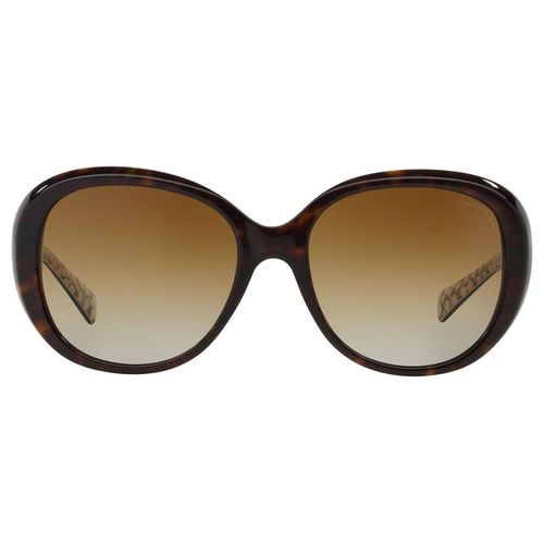 7739d82617 UPC 725125929691 product image for Coach HC8120 Carter Sunglasses - Dark  Tort Dark Tortoise Sand ...